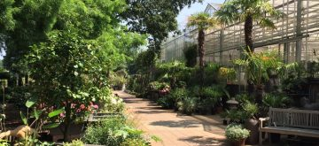 het_groenste_tuincentrum_2